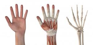 John Erickson Hand Specialist